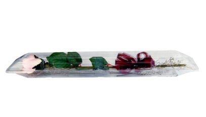 Rose Box - Small